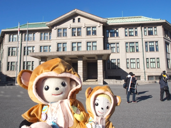 東京にお住まいのプリモプエルファンに有名な神ちゃんさんからプリモプエルの未来君とコプエルの太陽君のお写真をいただきました